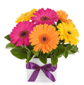 Easy Flowers: $46.5 For Jesse With Deal