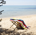 Canningvale: Deluxe Cotton Velour Beach Towel Only $20